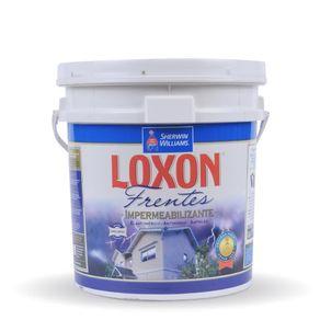loxon-impermeabilizante-para-frentes-blanco-10-litros