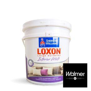 Loxon-interior-mate-Walmer-10-lts