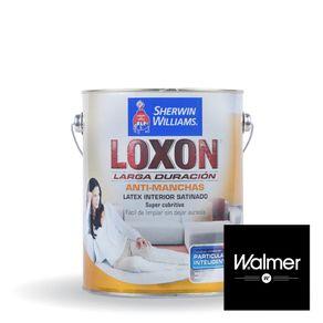 Loxon-interior-satinado-Walmer-1-lt