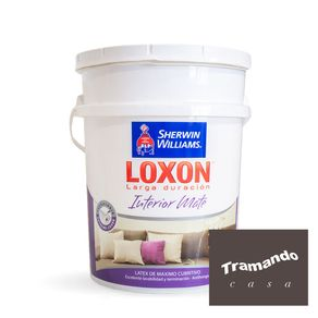 Loxon-interior-mate-Paleta-Tramando-20-Lts
