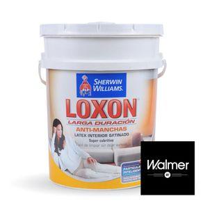 Loxon-interior-satinado-Walmer-20-lts