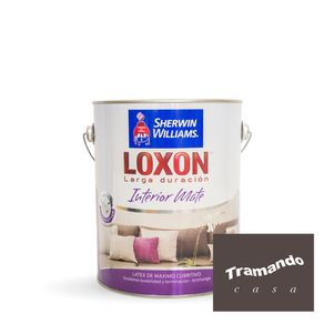 Loxon-interior-mate-Paleta-Tramando-4-Lts