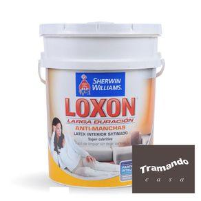 Loxon-interior-satinado-Paleta-Tramando-20-Lts