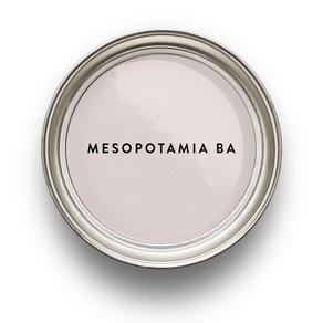 Rosa-japon-Mesopotamia-BA